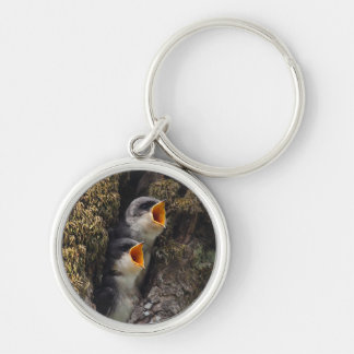 Two Baby Tree Swallows Silver-Colored Round Key Ring