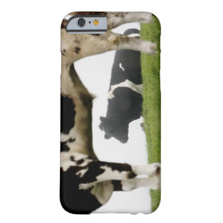 two barely there iPhone 6 case