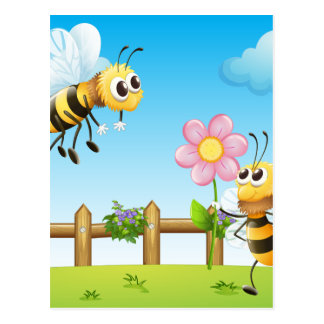 Two bees inside the wooden fence postcard