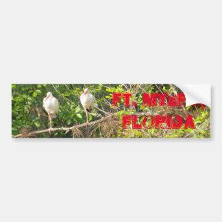 Two Birds Bumper Sticker