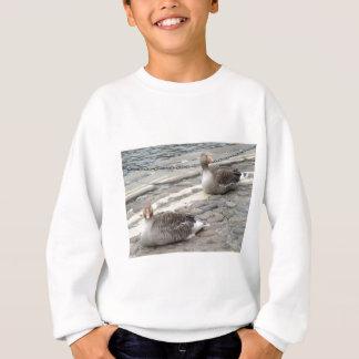 Two Birds Sweatshirt