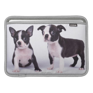 Two black and white puppies sleeve for MacBook air