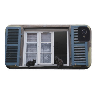 Two Black Cats at Window iPhone 4 Case-Mate Cases