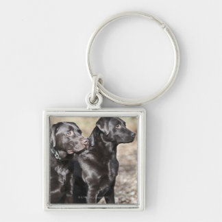 Two Black Labrador retrievers Silver-Colored Square Key Ring