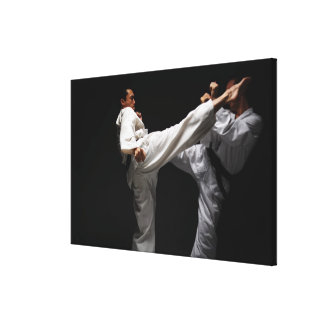 Two Blackbelts Sparring 2 Canvas Print