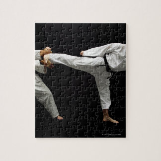 Two Blackbelts Sparring 2 Puzzle