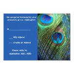 Two Blue Peacock Feathers RSVP Invitations