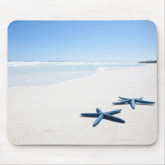 Two blue starfish at water's edge on tropical 2 mouse mat