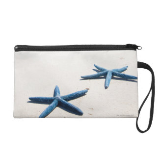 Two blue starfish at water's edge on tropical wristlet