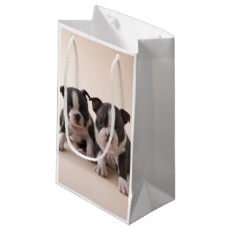 Two Boston Terrier Puppies Small Gift Bag