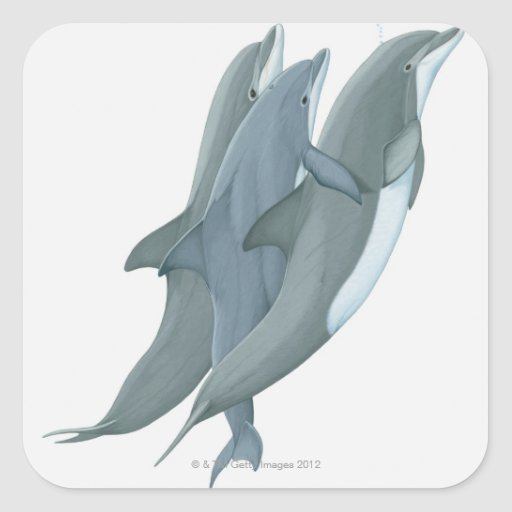 Two Bottlenosed Dolphins Sticker