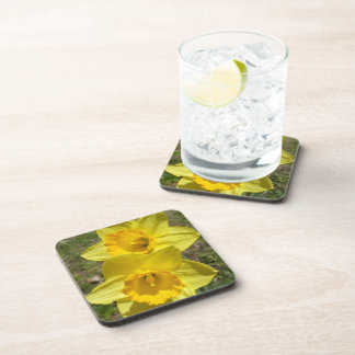 Two Bright Yellow Daffodils Drink Coaster