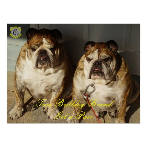 Two Bulldog Brand Get a Pair Portrait Poster
