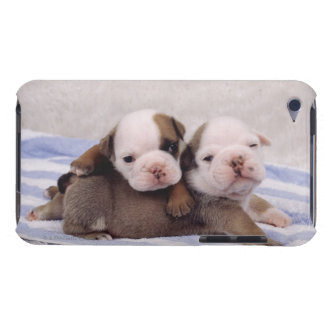Two bulldog puppies on towel iPod Case-Mate case