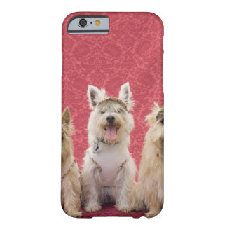 Two cairin terriers and one westie barely there iPhone 6 case