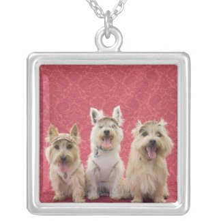 Two cairin terriers and one westie silver plated necklace
