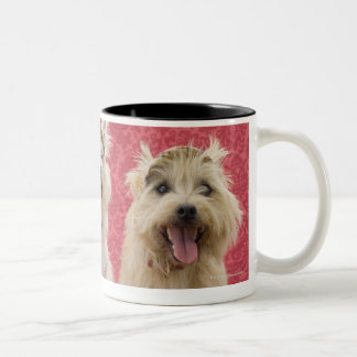 Two cairin terriers and one westie Two-Tone coffee mug
