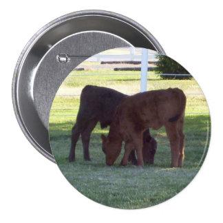 Two Calves Button