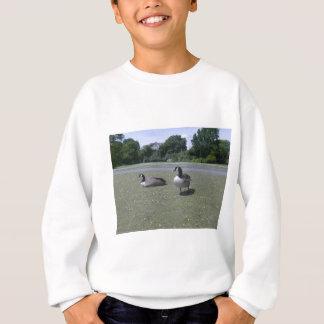Two Canada Geese Sweatshirt