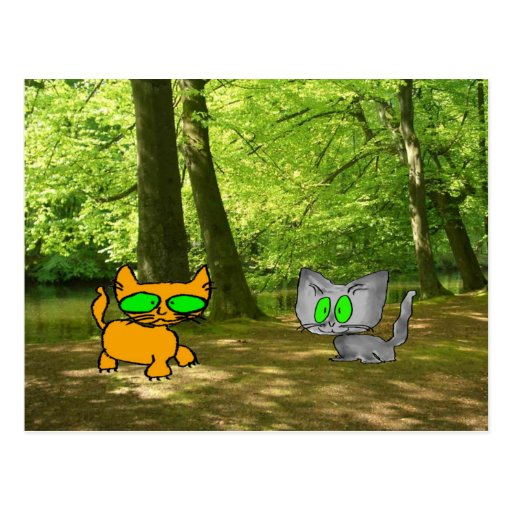 Two Cats Explore The Great Out Doors Postcards