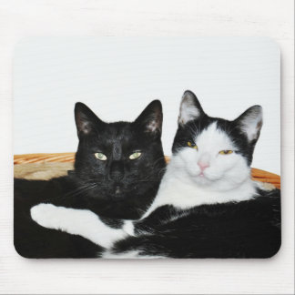 Two Cats in Love Mousepad