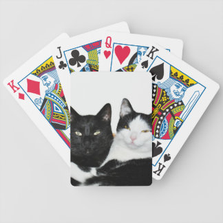 Two Cats in Love Bicycle Poker Cards