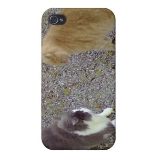 Two Cats iPhone 4/4S Cover