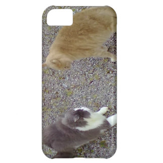 Two Cats iPhone 5C Case