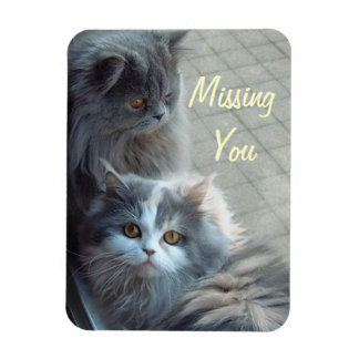 Two Cats Missing You. Premium Magnet