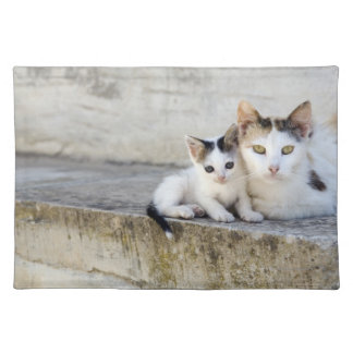 Two cats on stone steps placemat
