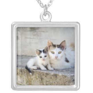 Two cats on stone steps silver plated necklace