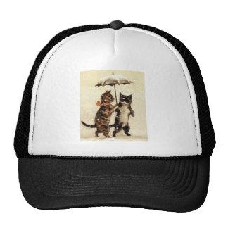 Two Cats One Umbrella Hats