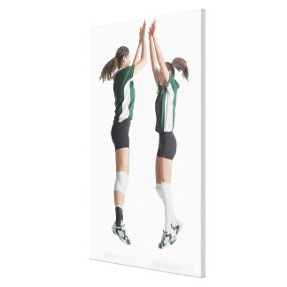 two caucasian female volleyball players from the canvas print