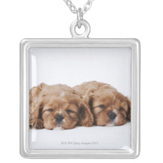 Two Cavalier King Charles Spaniel puppies Silver Plated Necklace