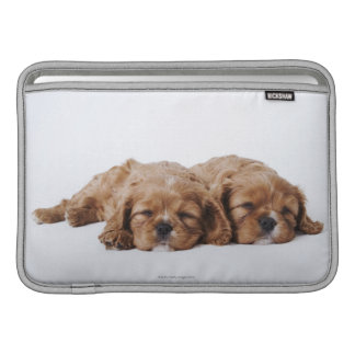 Two Cavalier King Charles Spaniel puppies Sleeve For MacBook Air