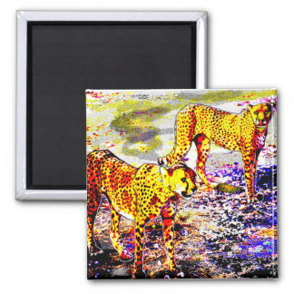 Two Cheetahs Magnet