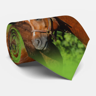 Two Chestnut Horses: Lean on Me Tie