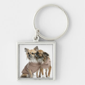 Two Chihuahuas dressed (2 years old) Silver-Colored Square Key Ring