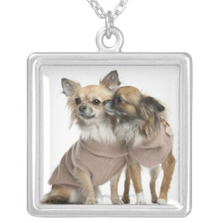 Two Chihuahuas dressed (2 years old) Silver Plated Necklace