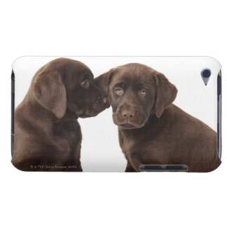 Two chocolate Labrador Retriever Puppies Barely There iPod Cases