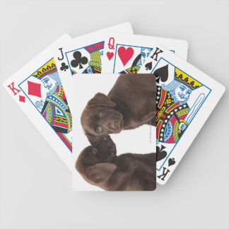 Two chocolate Labrador Retriever Puppies Bicycle Playing Cards