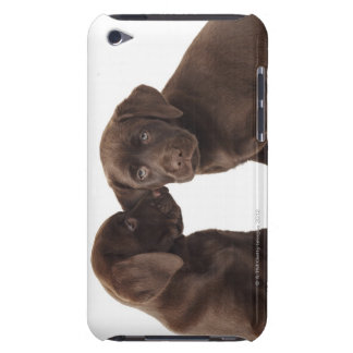 Two chocolate Labrador Retriever Puppies iPod Touch Cover