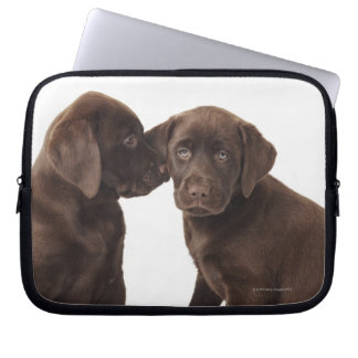 Two chocolate Labrador Retriever Puppies Laptop Sleeve