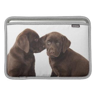 Two chocolate Labrador Retriever Puppies MacBook Sleeve