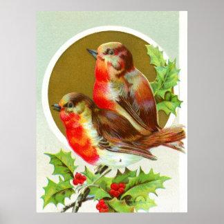 Two Christmas robins Poster