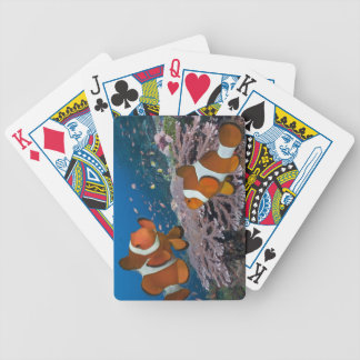 Two Clownfish Bicycle Playing Cards