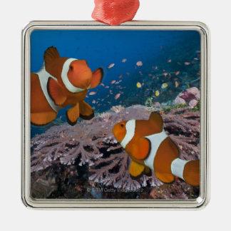 Two Clownfish Christmas Ornament