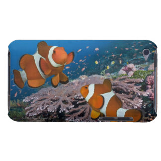 Two Clownfish iPod Touch Case-Mate Case