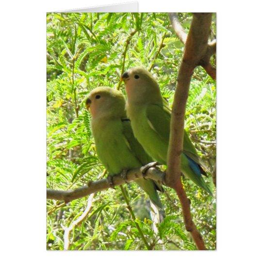 Two Cockatoos of Arizona Card