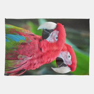 Two colorful macaw parrots tea towel